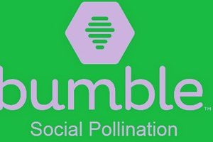 bumble-app-pc-windows-android-download