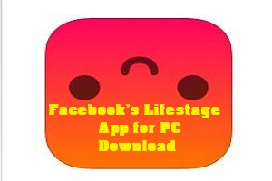 Facebook's Lifestage App for PC