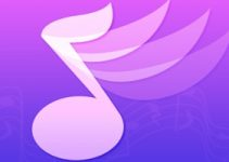 Intro Music Pro for PC