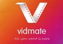 Vidmate for iPhone