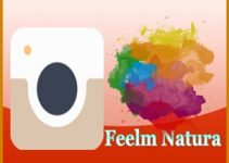 Feelm Natura for PC